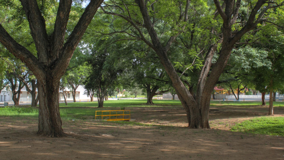 United Nations Park Tsumeb